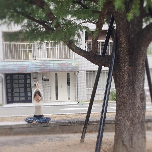 三谷茉布(みたにまゆ)